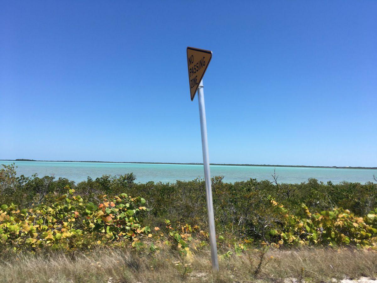 La mangrove dans cette zone de réserve protégée pour la pêche
