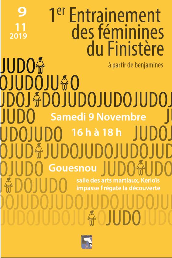 Changement : Stage de perfectionnement sportif des Féminines du Finistère - 09 novembre 2019 - Gouesnou