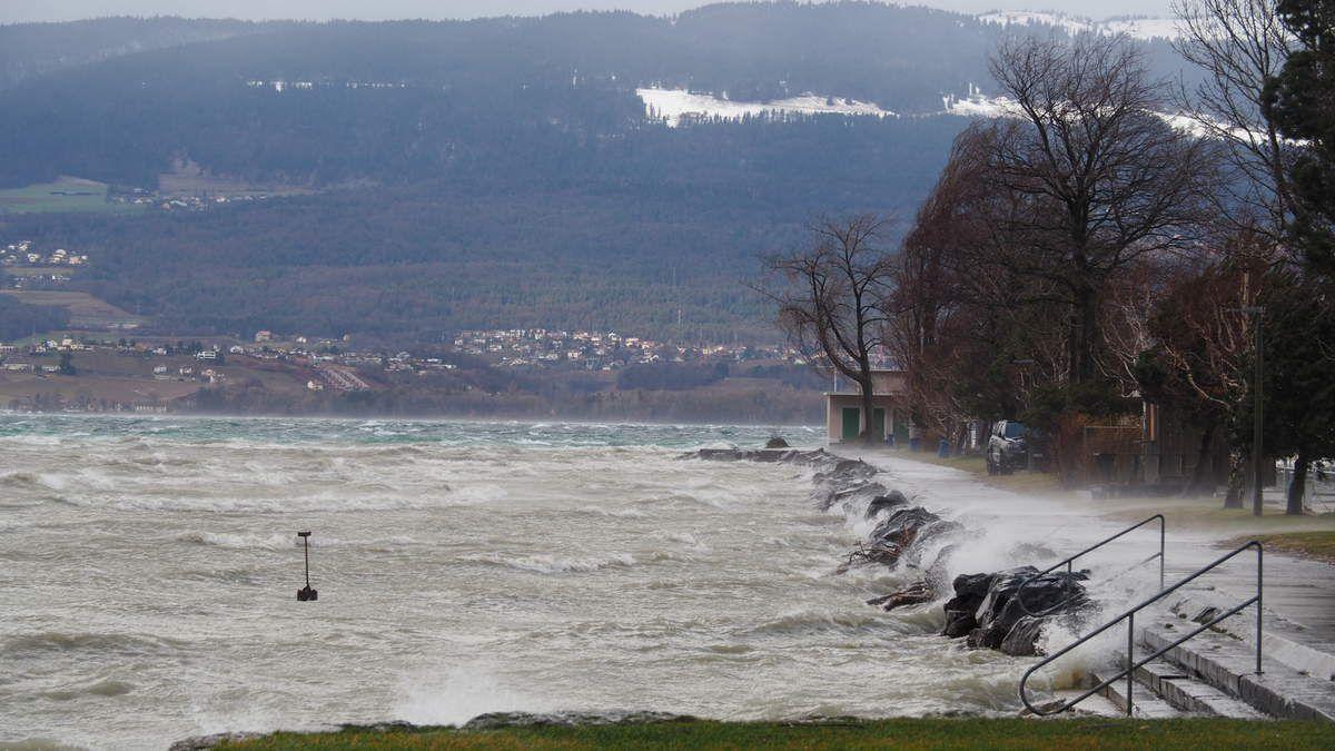 Les vagues sur le lac