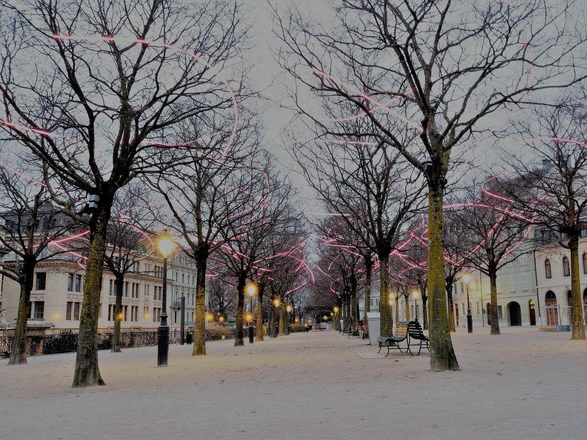 Lumières de Noël à Genéve