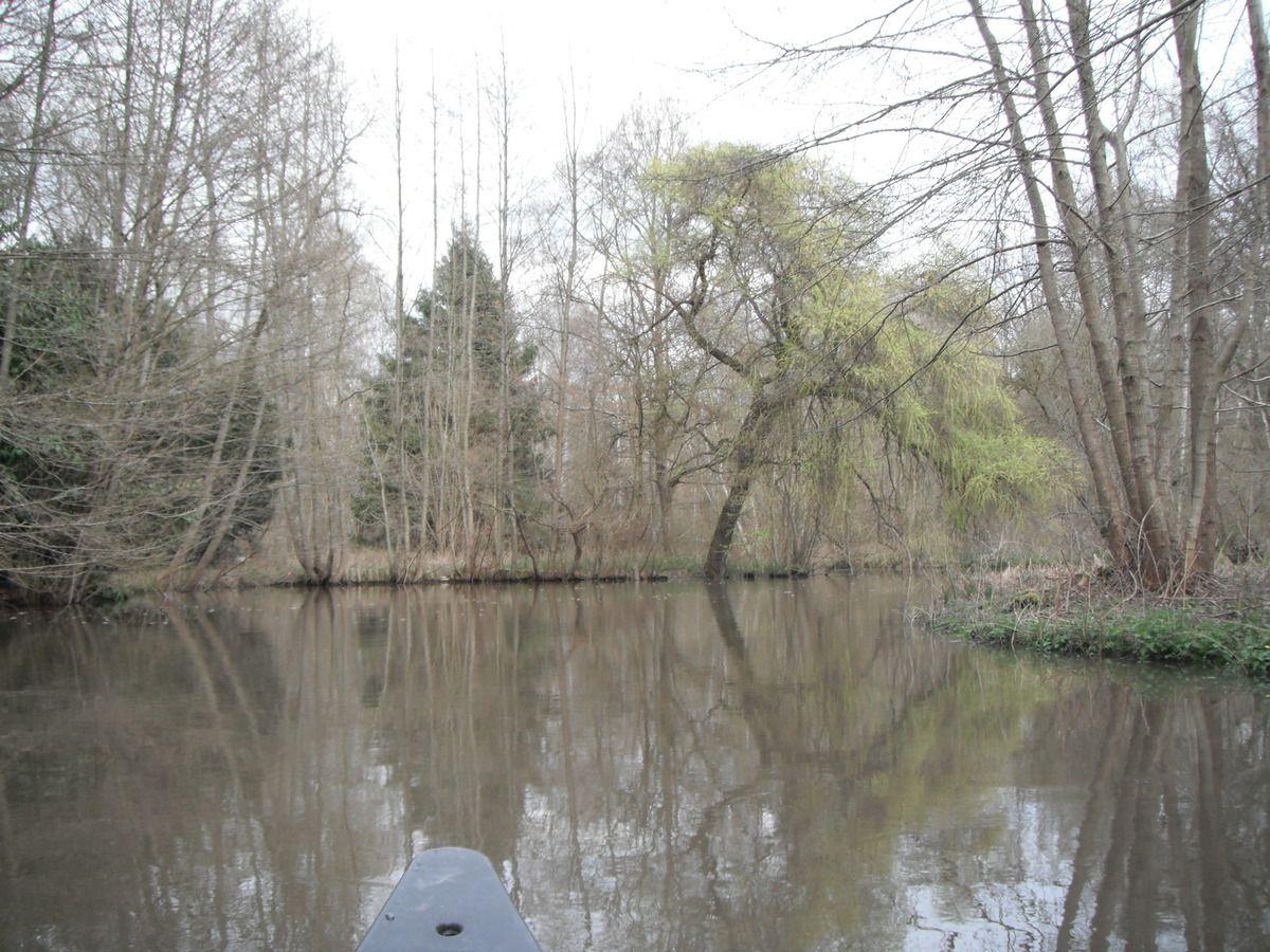 Descente canoë sur l'essonne de Malesherbes à Argeville (10km) 2016