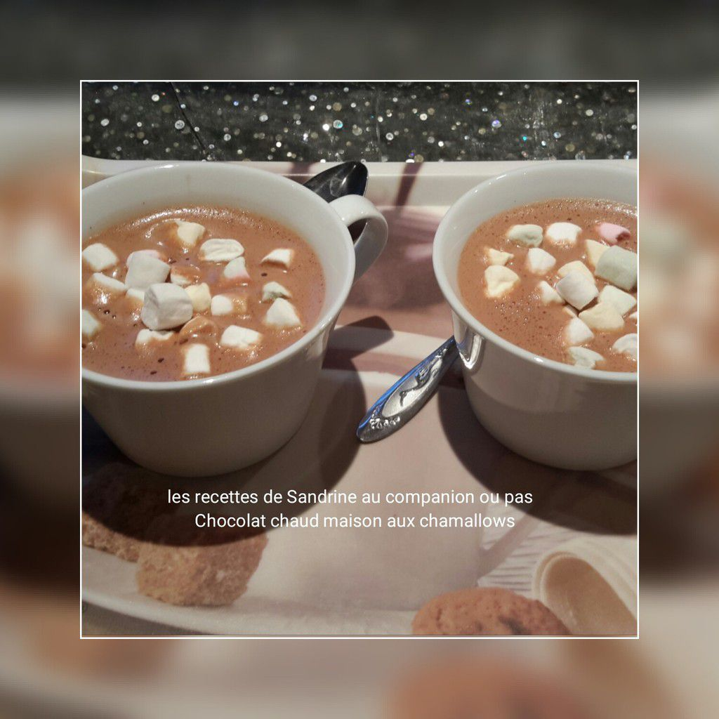 Chocolat chaud aux chamallows au companion, thermomix, i cook'in ou sans robot