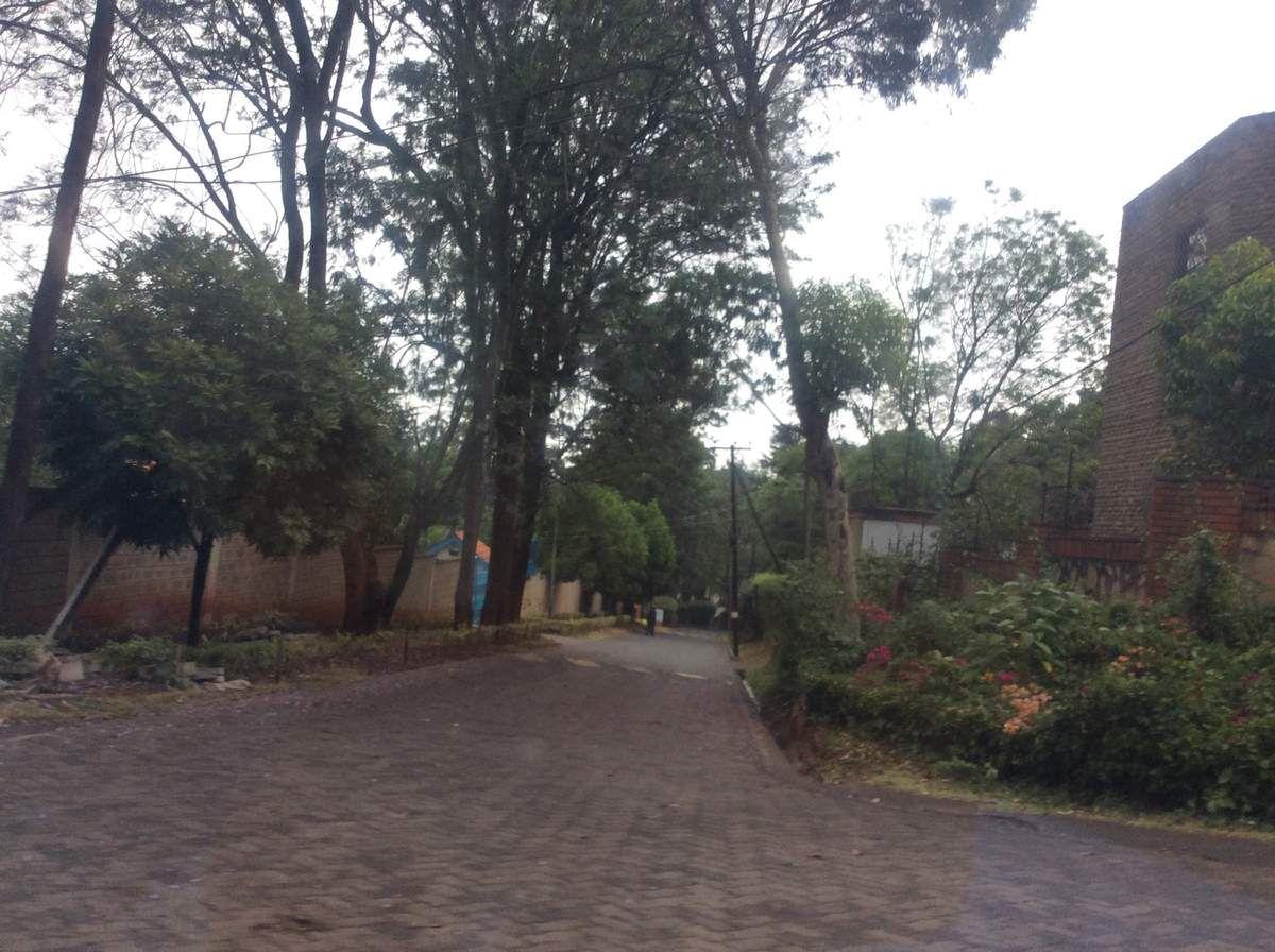 Une ruelle d'un quartier résidentiel