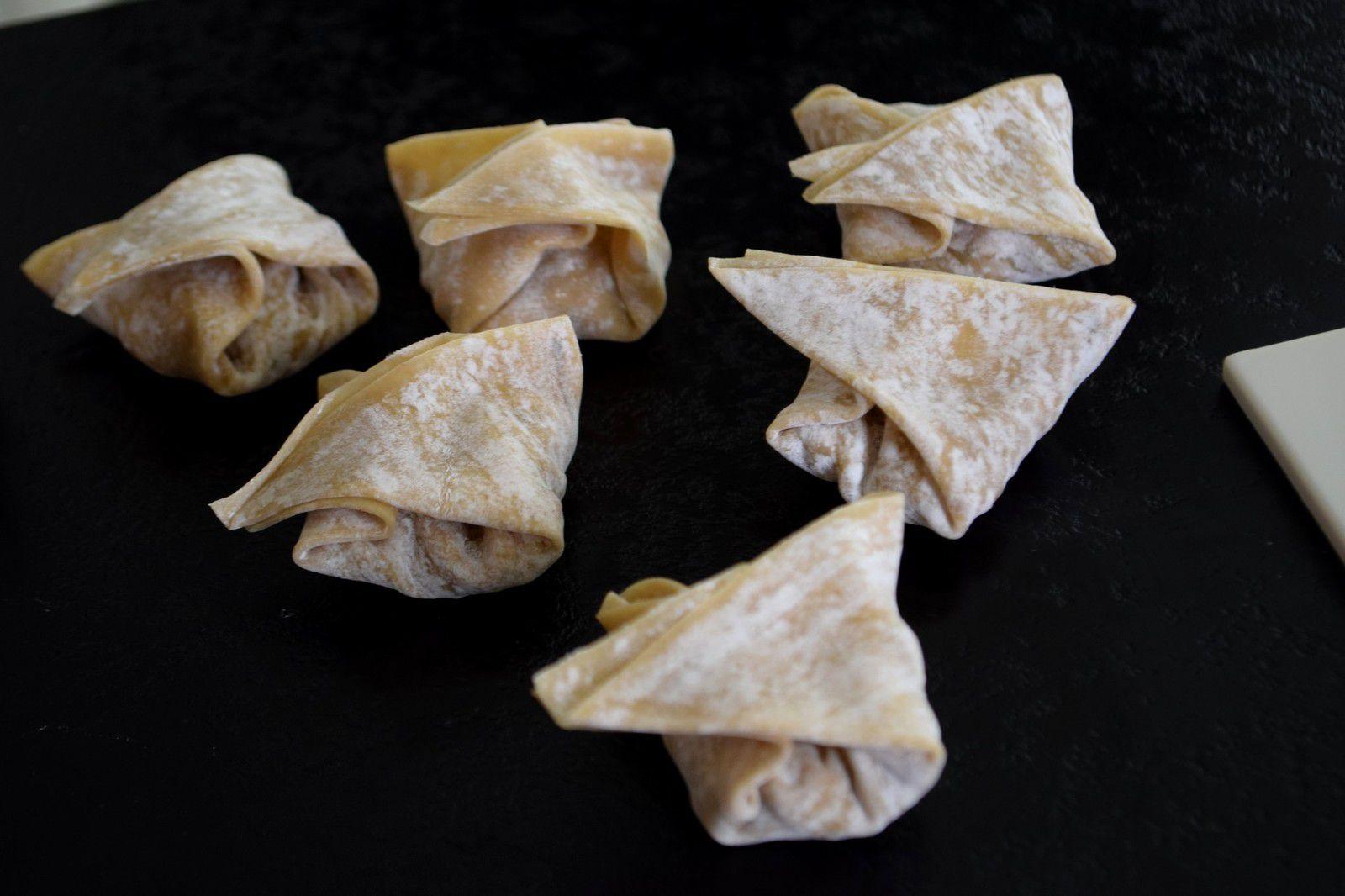 Wontons frits au Poulet & aux Champignons
