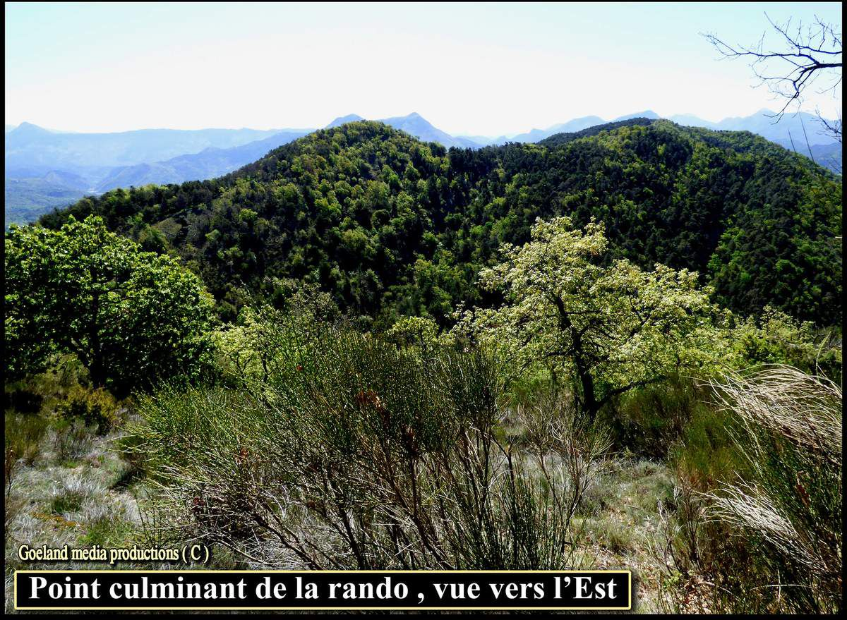 les HAUTS de BARRIERE ( Champtercier ), pays dignois - alpes de haute Provence