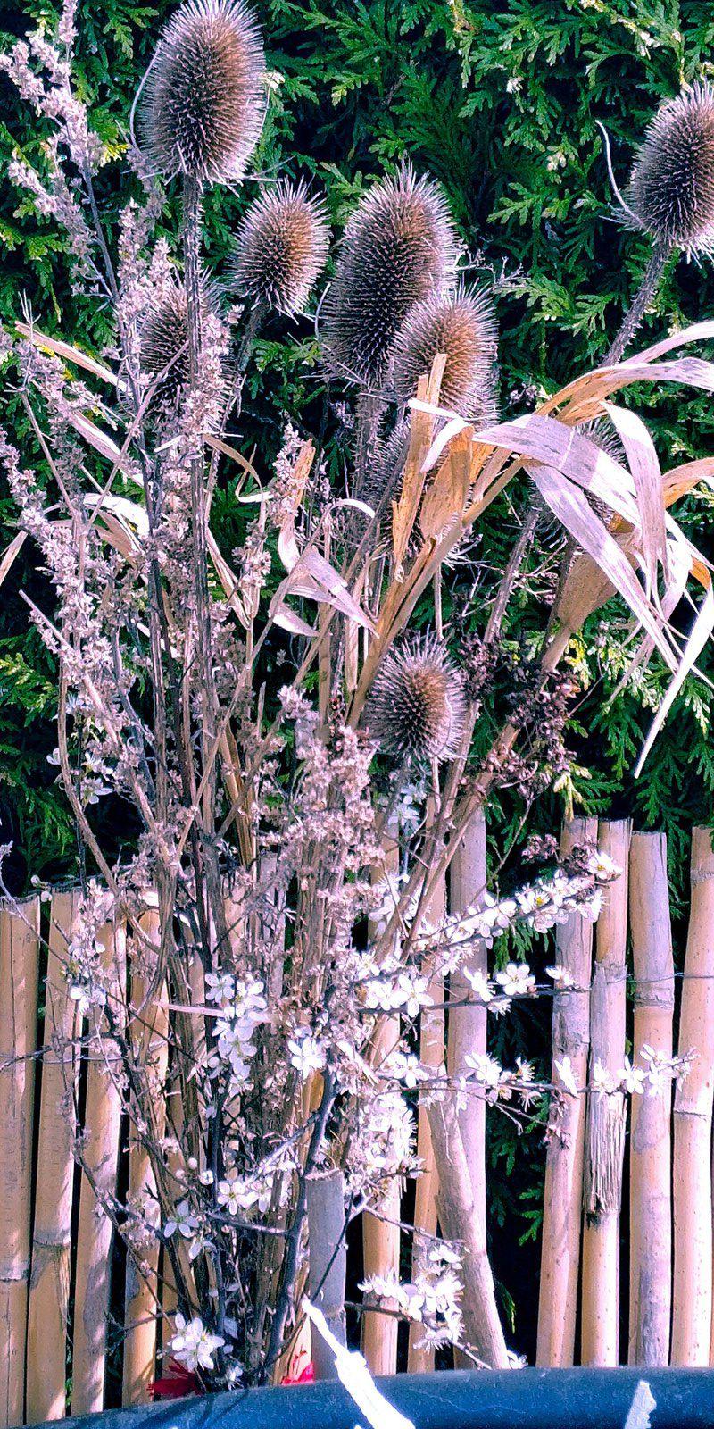 Composition florale avec des végétaux en forêt et dans nos jardins