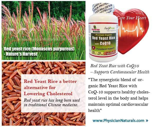 Physician Naturals Premium Red Yeast Rice
