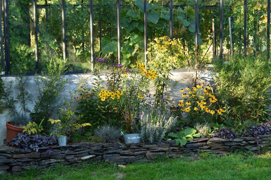Au Sud, bordure aux tons chauds : héléniums et rudbeckia apportent des teintes jaunes et les heuchères une touche de rouge.