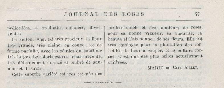 """Dans """"le journal des roses"""" de 1912, on trouve une belle description...mais il faut un dictionnaire pour la comprendre. (1)"""