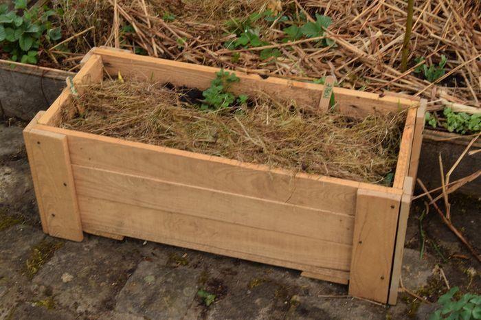 Cultiver un mini-potager selon la méthode de Damien Dekarz