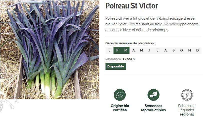 Semailles : une belle adresse où acheter ses graines de légumes