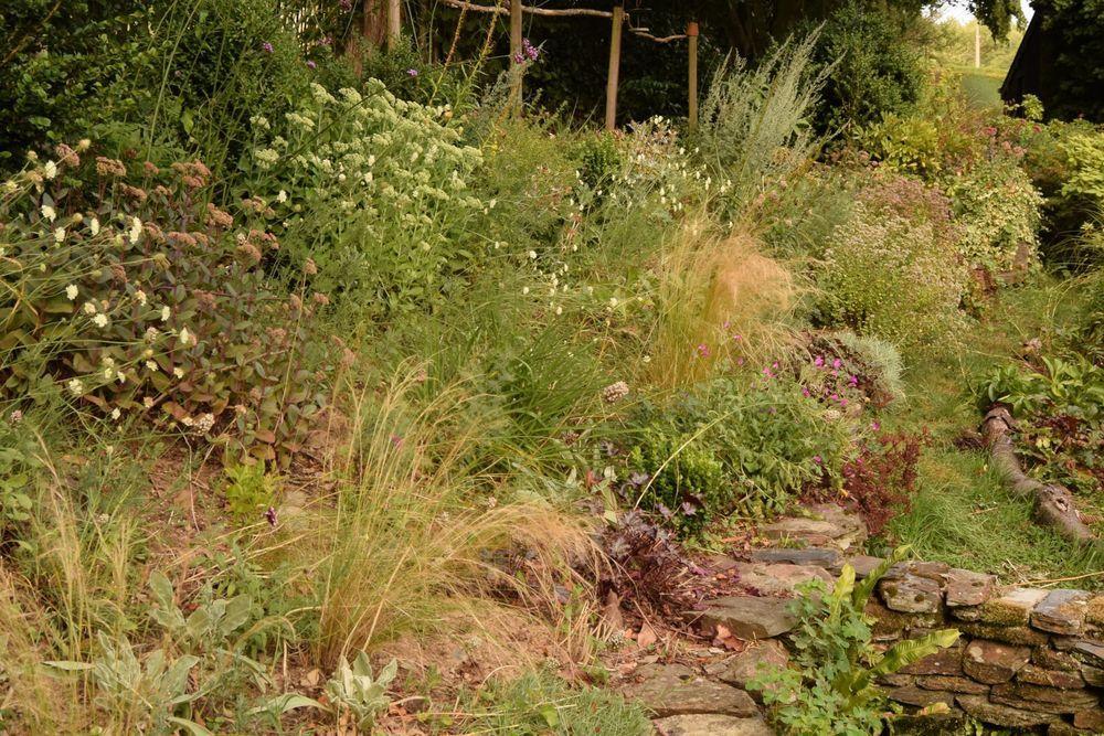 Le jardin entre juin et août
