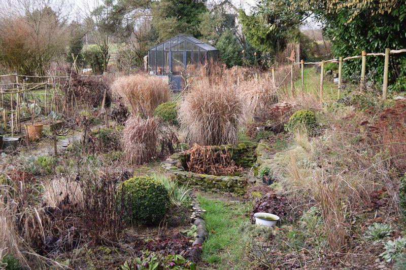 L'état (lamentable) du jardin fin janvier