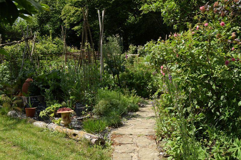 Visite du jardin : sous le pommier