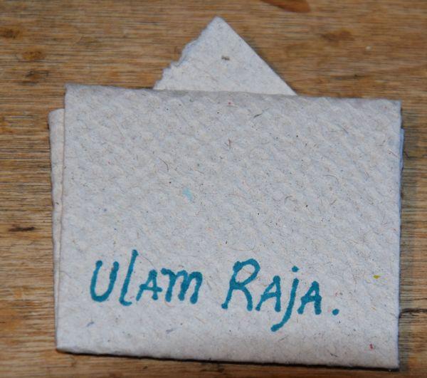 """""""Cosmos caudatus"""" : c'est le nom latin de l'ulam raja."""