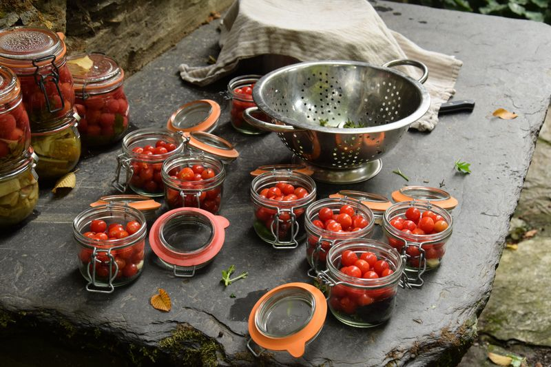 Journal du 31 août : lacto-fermentation des tomates Matt's wild cherry