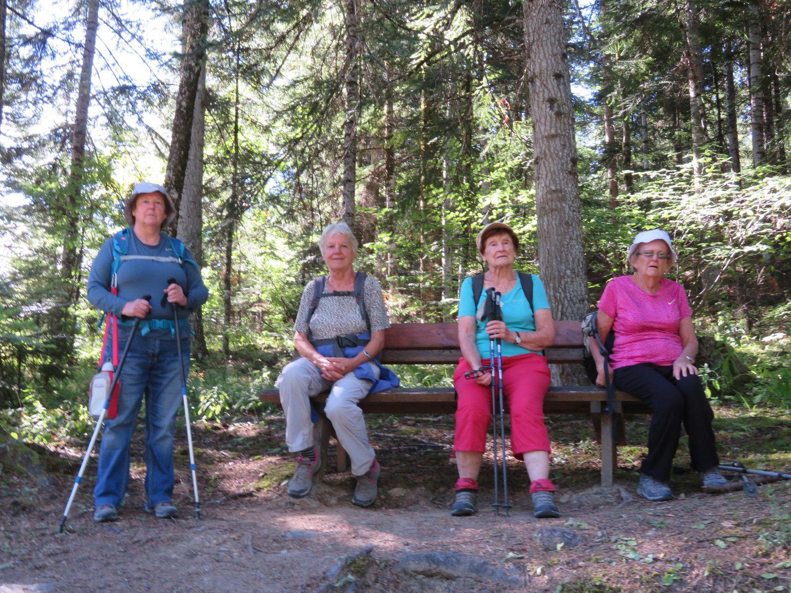 Avant la grimpette du chemin des Dames, forêt de Boscodon. (Photo MF)
