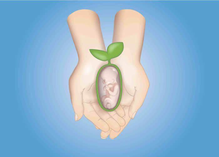 Fertility Preservation in Cancer