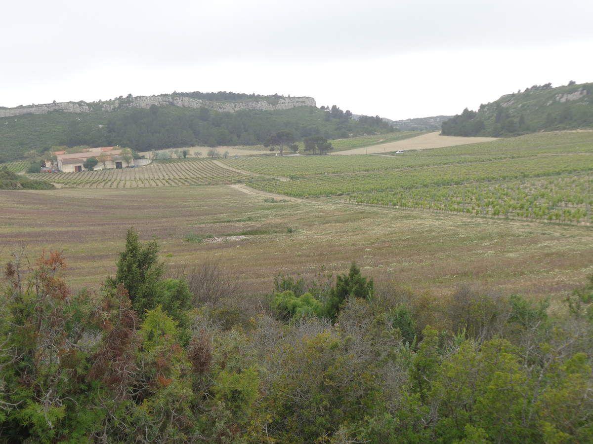Mai 2017. Château des Karantes