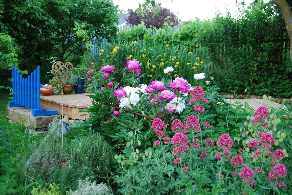 "Jardin ""Les Joubarbes"". Photos : Jean-Louis Schmitt"