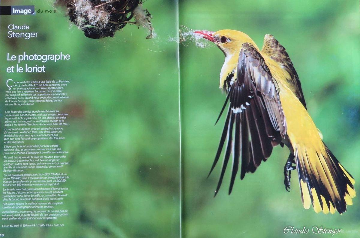 L'image du mois parue dans le magazine Chasseur d'Images.