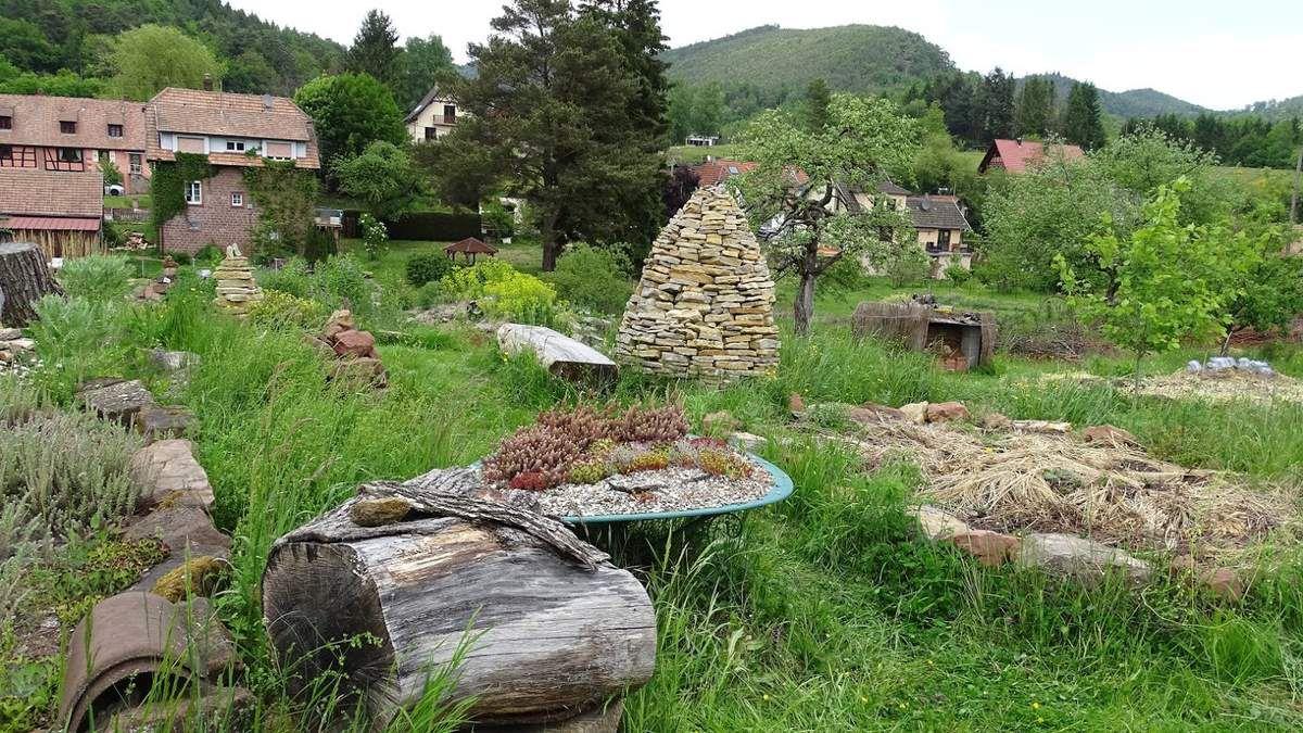 Jardin expérimental « Hymenoptera ». Photo : JLS (Cliquez pour agrandir)