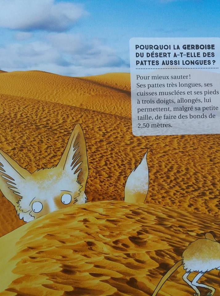 Mes 150 questions - Animaux - Editions Flammarion jeunesse