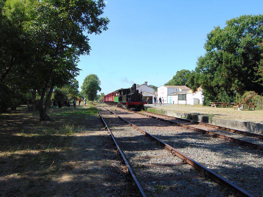 Locomotive Vapeur - Musée ferroviaire de Mornac-sur-Seudre et Train des Mouettes -21 08 18