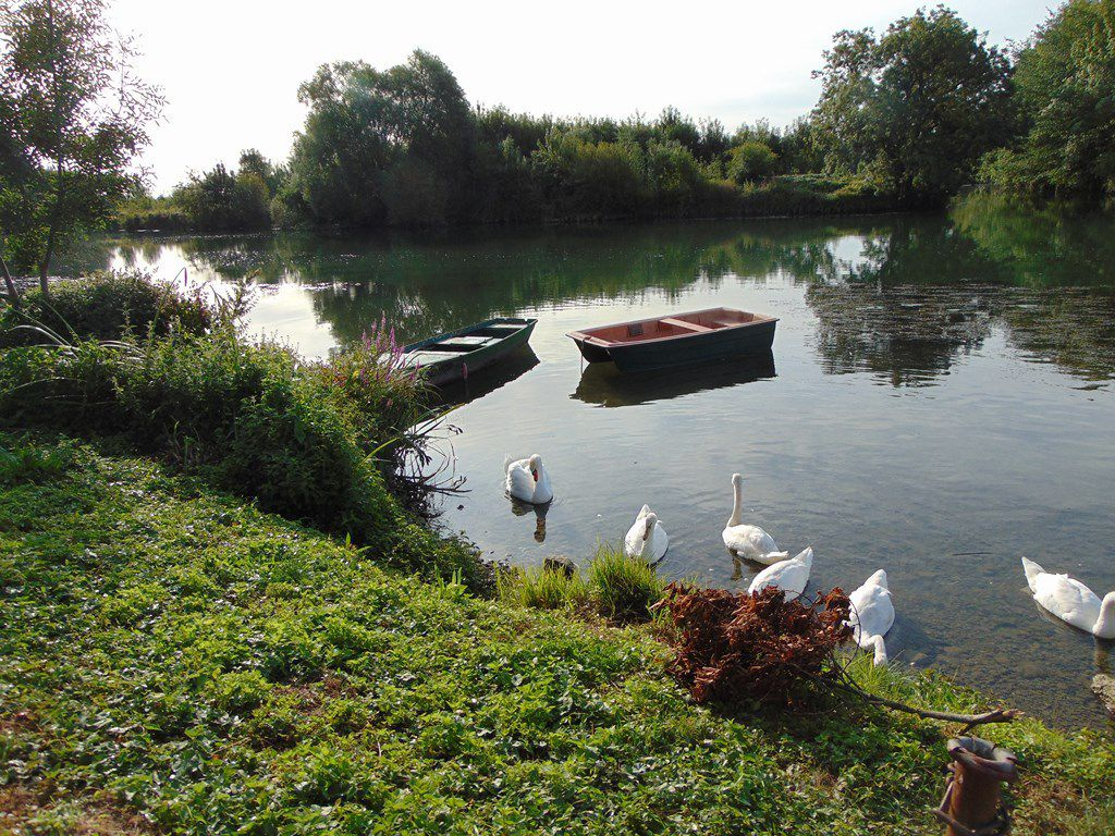 La magie des bords de Charente