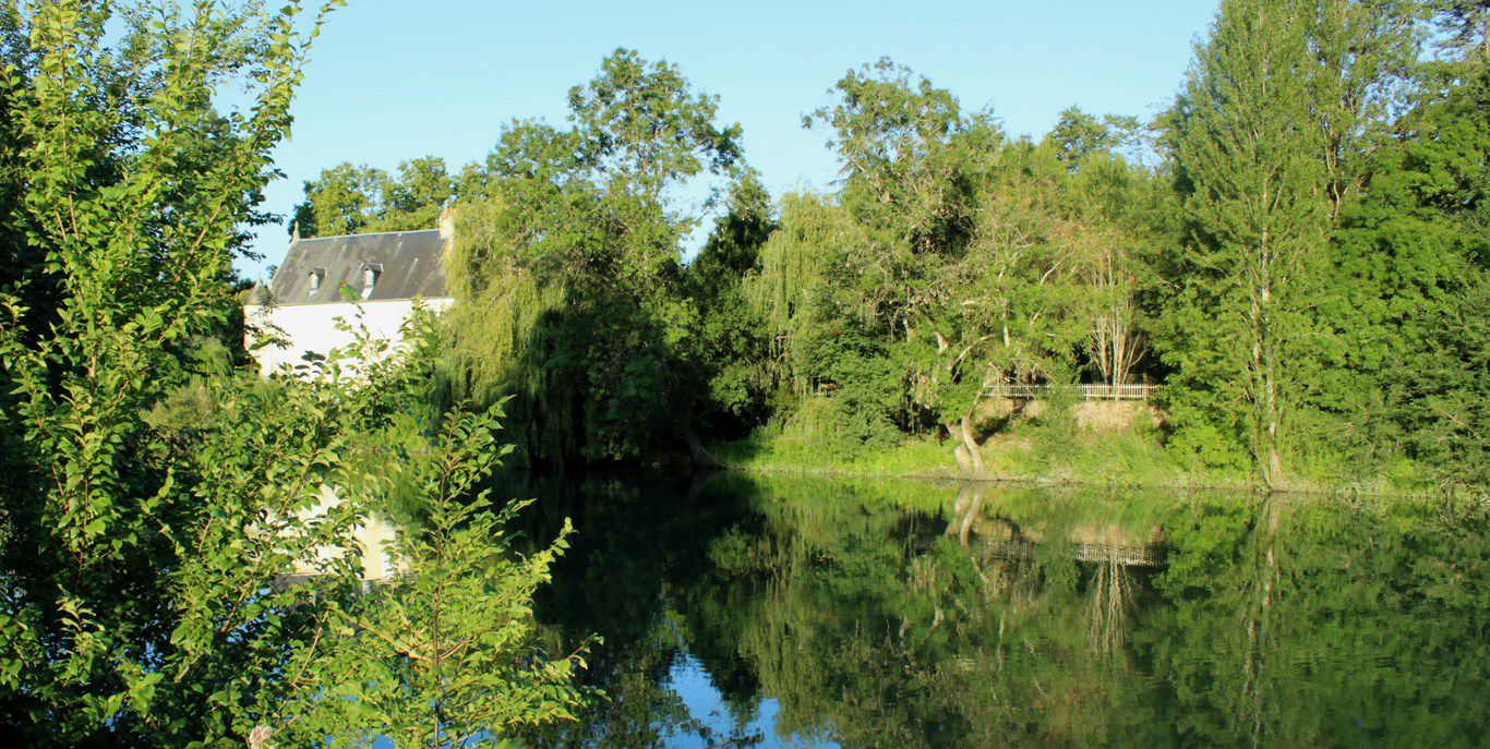Balade en bord de Charente - Fontcouverte-Saintes, 20  juillet 2020
