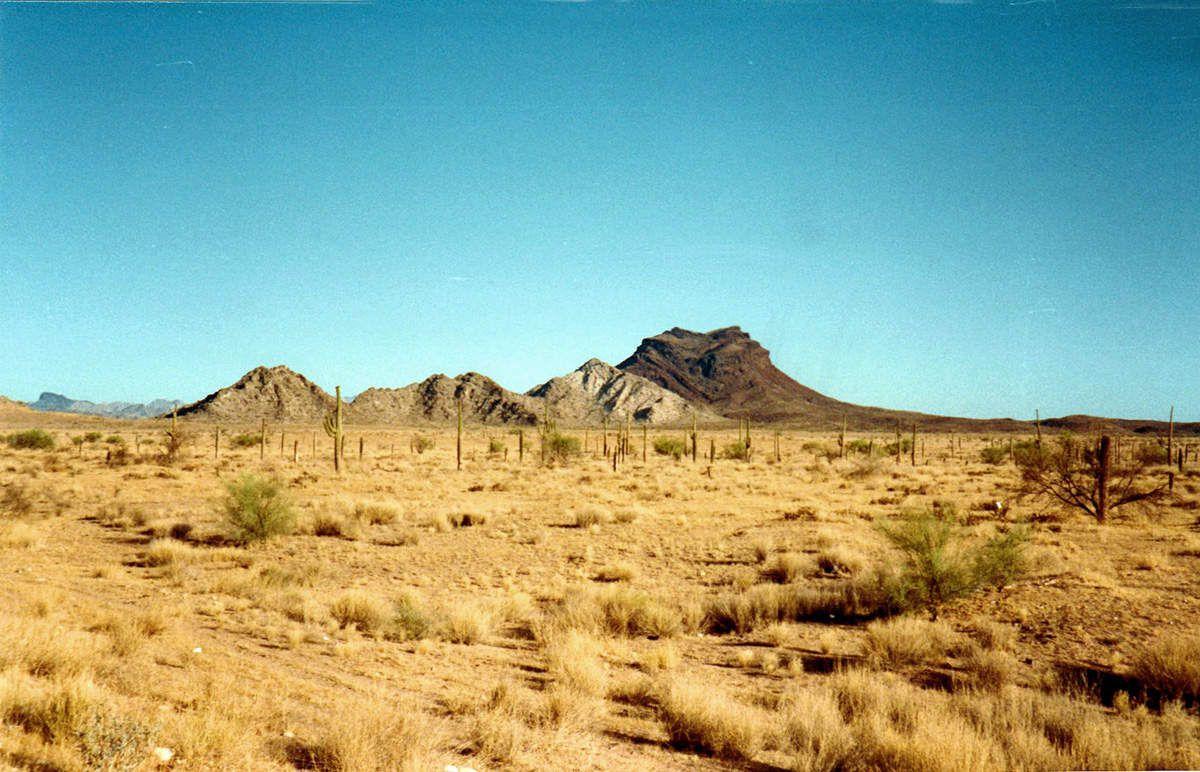 Sud est Californie - 1986