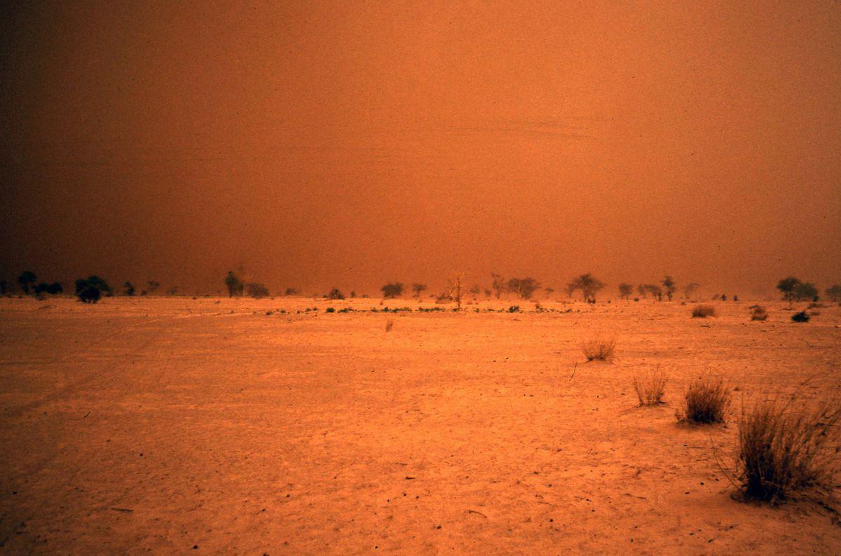 Une tempête de sable : on a plus qu'à attendre
