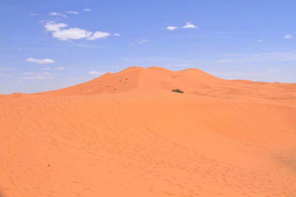 Au Sud d'Erfoud : Les dunes de Merzouga