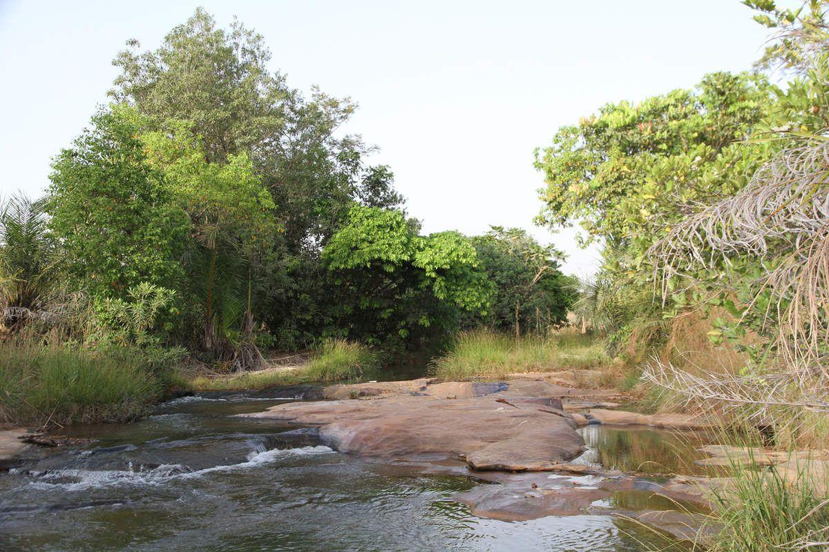 Cascade : Il y a même un crocodile en bas