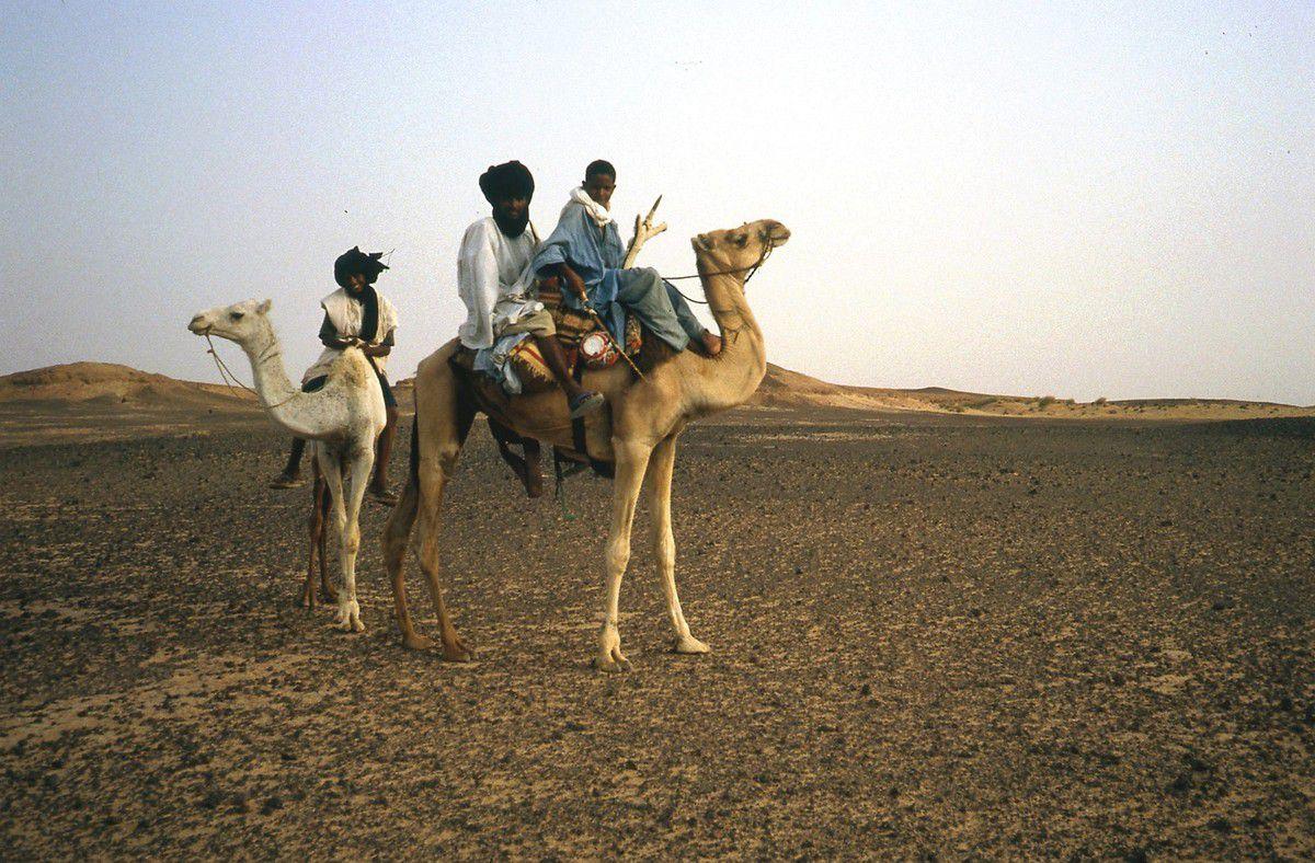 Nord Mali - 1982