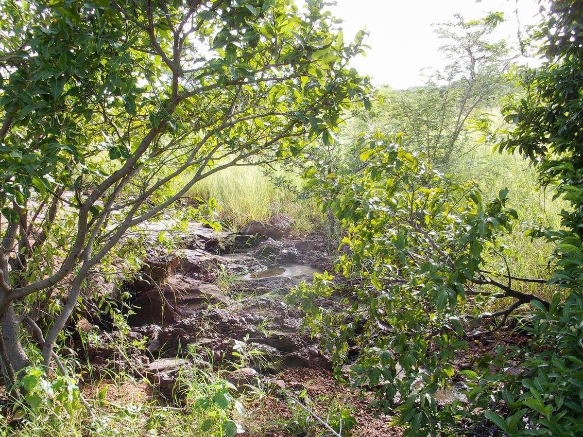 Petit ruisseau temporaire.