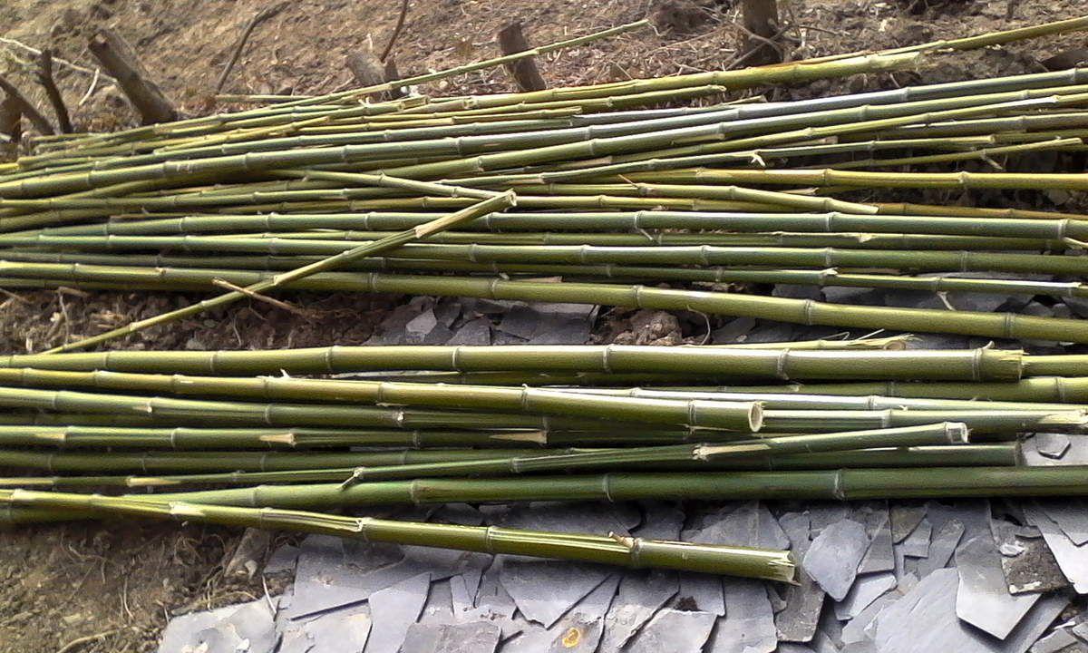 Fabriquer Un Brise Vue Bois fabriquer un brise vue en bambou - les créations d'ilo