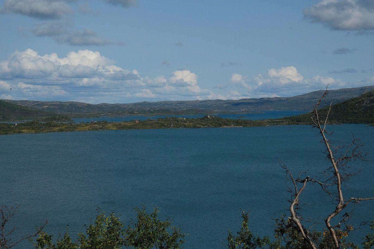 Traversée du hardangervidda, parc naturel national
