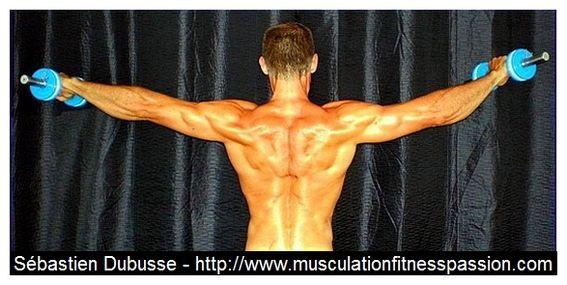Programme et conseils de musculation pour élargir vos épaules  ! Sébastien Dubusse, blog musculationfitnesspassion
