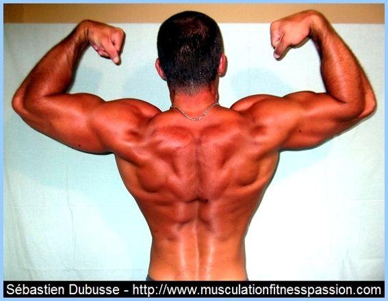 Les protéines, ces nutriments essentiels ! Sébastien Dubusse, blog musculationfitnesspassion