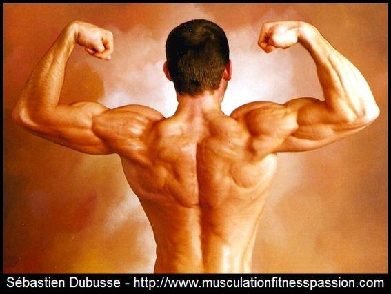 Plan d'entraînement d'Alexandre amélioré, Sébastien Dubusse, blog musculationfitnesspassion