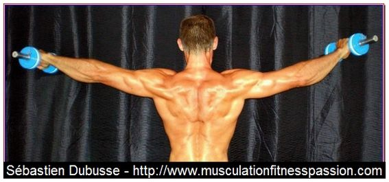 Développez et élargissez vos épaules avec les élévations latérales, Sébastien Dubusse, blog Musculation/Fitness Passion