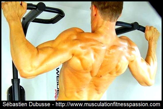 Suite des articles, Sébastien Dubusse, blog Musculation/Fitness Passion
