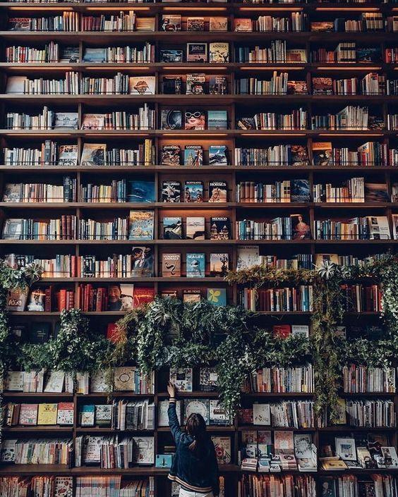 Mon blog devient un blog littéraire : explications !
