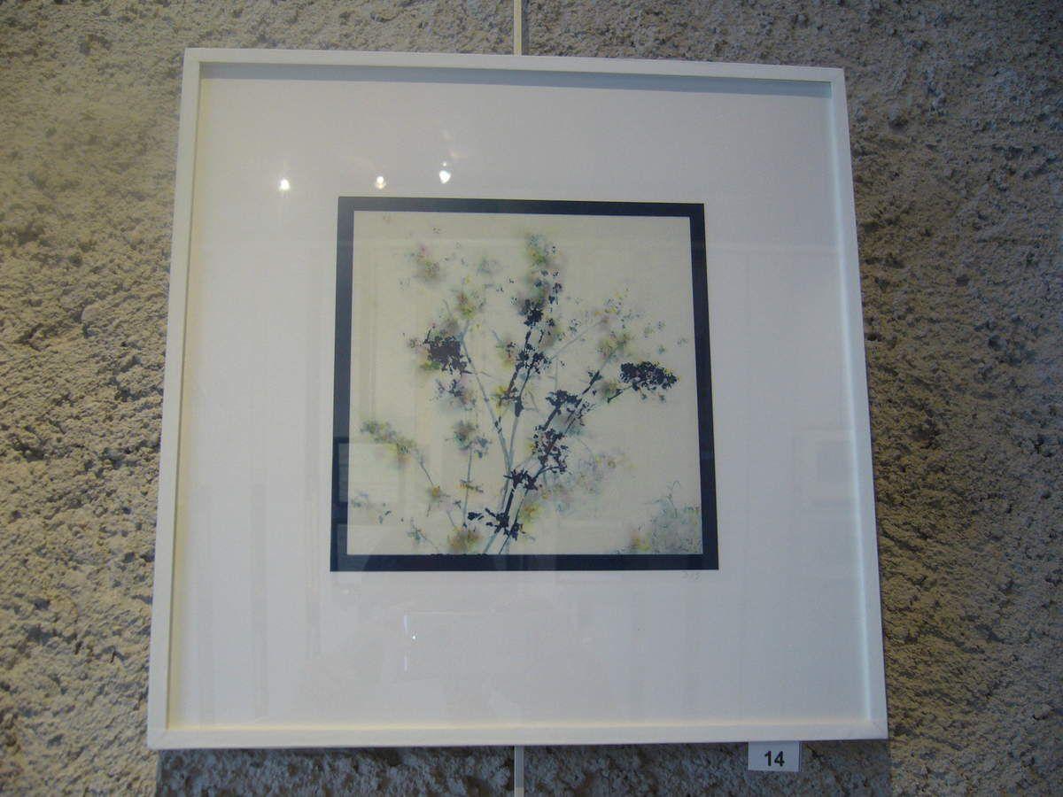 Les 4 saisons du jardin de Saizerey, cyanotype