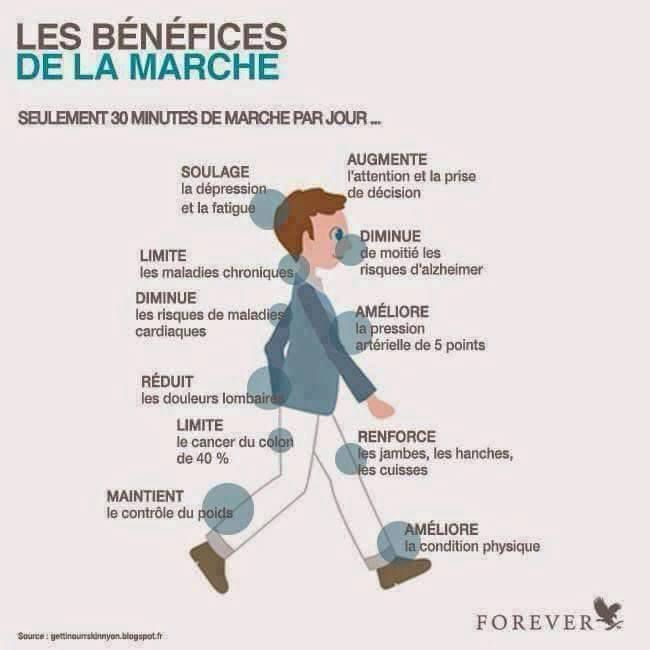 LES BENEFICES DE LA MARCHE