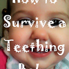 Teething Tips-How to Survive