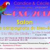 Salon du bien-ètre à La Cote saint André c'est ce week-end et c'est gratuit!