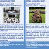 Appel au don et au mécénat pour l'organisation du jubilé des 50 ans du diocèse de Nanterre