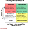 Consumer loyalty and organization development